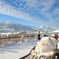 Fewo Kaiserwinkl, 1-2 Personen, die Winterstimmung entspannt genießen