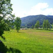 Frühling in Reit im Winkl, Wiese vor Ferienhaus Neumaier