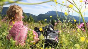 Sommerurlaub in Reit im Winkl, Naturgenuss Blumenwiese