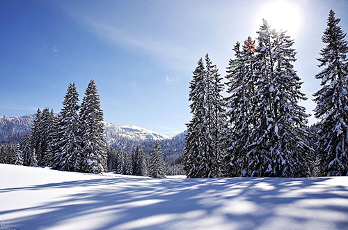 Winterparadies Chiemgau