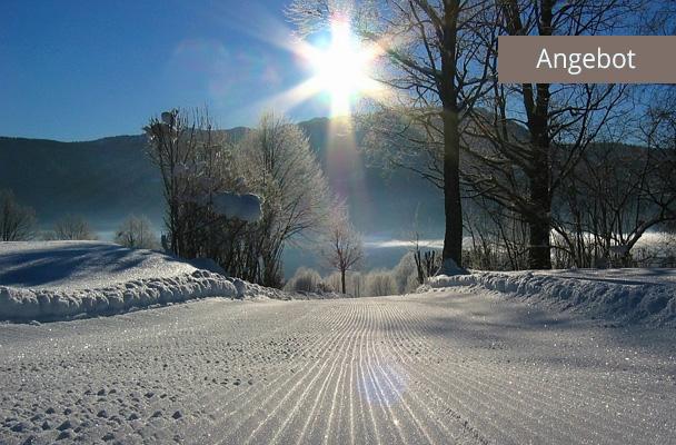 Langlauf in Reit im Winkl, Loipe in Winterlandschaft