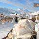 Winterurlaub in Reit im Winkl, Blick von Garten Ferienhaus Neumaier auf Kaisergebirge