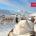 Wintertraum Reit im Winkl, tief verschneiter Garten mit Liege, Bild für Fewo ausgebucht