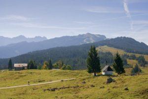 Winklmoosalm in Reit im Winkl Chiemgau Oberbayern