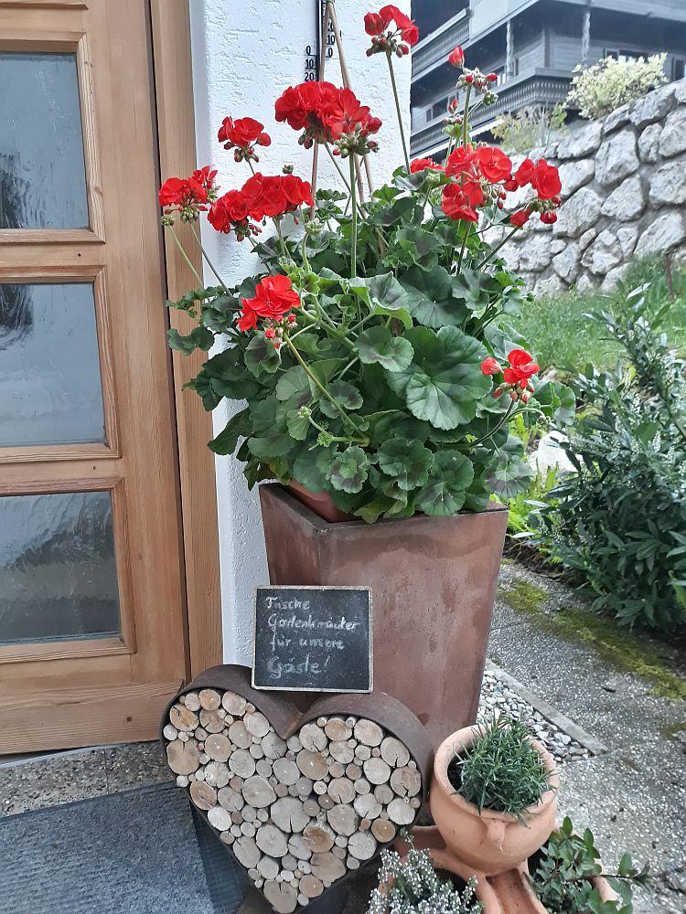 Foto von Eingangstür mit Kräutern von Ferienhaus Neumaier in Reit im Winkl